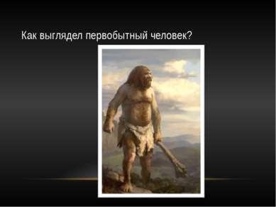 Как выглядел первобытный человек?