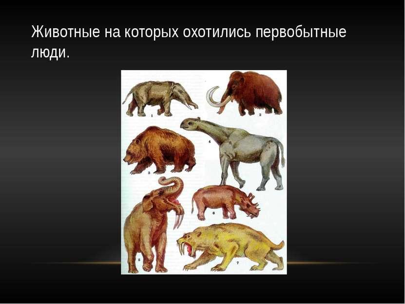 Животные на которых охотились первобытные люди.