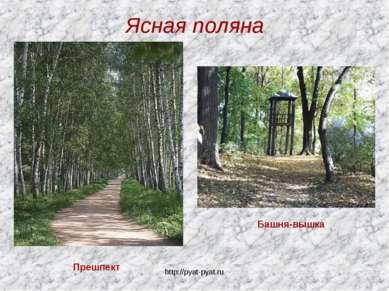 Ясная поляна Прешпект Башня-вышка http://pyat-pyat.ru http://pyat-pyat.ru