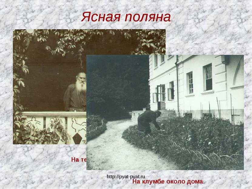 Ясная поляна На террасе На клумбе около дома http://pyat-pyat.ru http://pyat-...