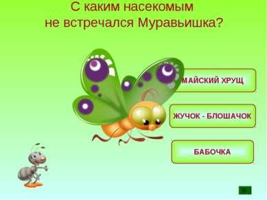 С каким насекомым не встречался Муравьишка? МАЙСКИЙ ХРУЩ БАБОЧКА ЖУЧОК - БЛОШ...