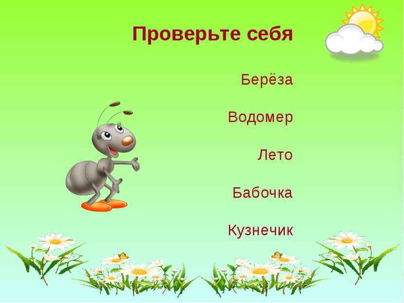 Проверьте себя Берёза Водомер Лето Бабочка Кузнечик
