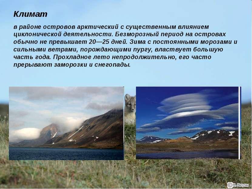 Климат в районе островов арктический с существенным влиянием циклонической де...