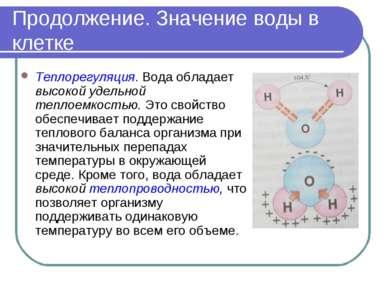 Продолжение. Значение воды в клетке Теплорегуляция. Вода обладает высокой уде...