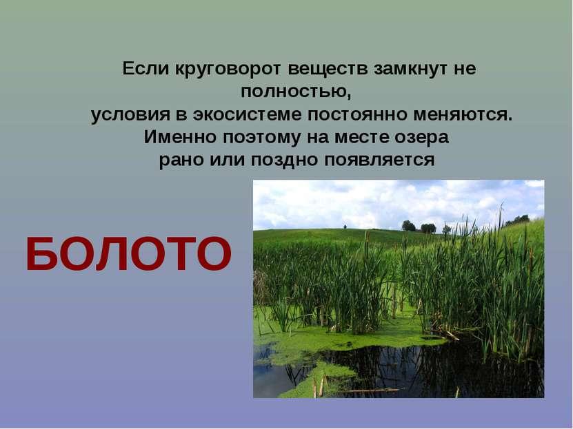 Если круговорот веществ замкнут не полностью, условия в экосистеме постоянно ...