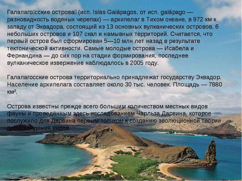 Галапаго сские острова (исп. Islas Galápagos, от исп. galápago — разновидност...