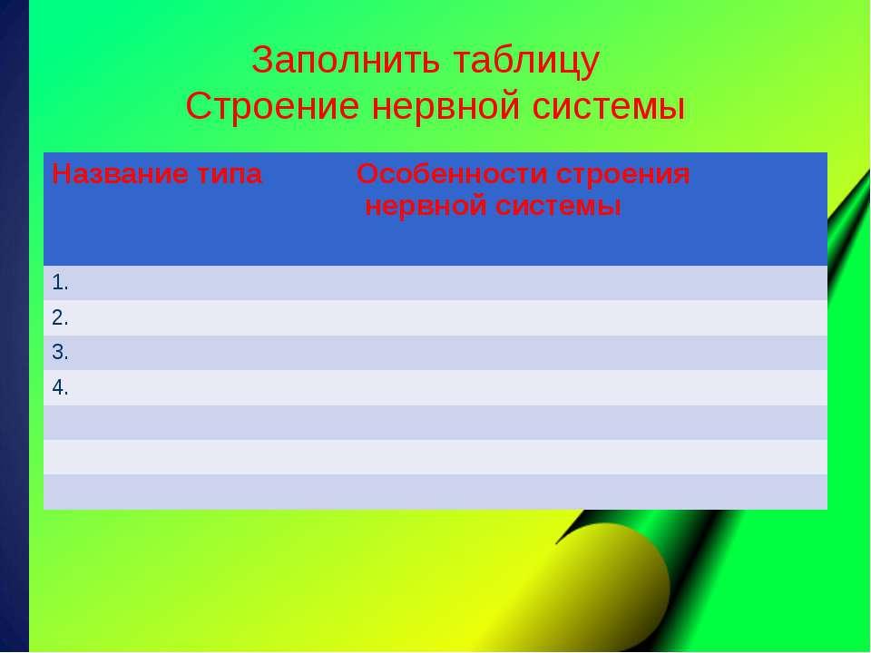 Заполнить таблицу Строение нервной системы Название типа Особенности строения...