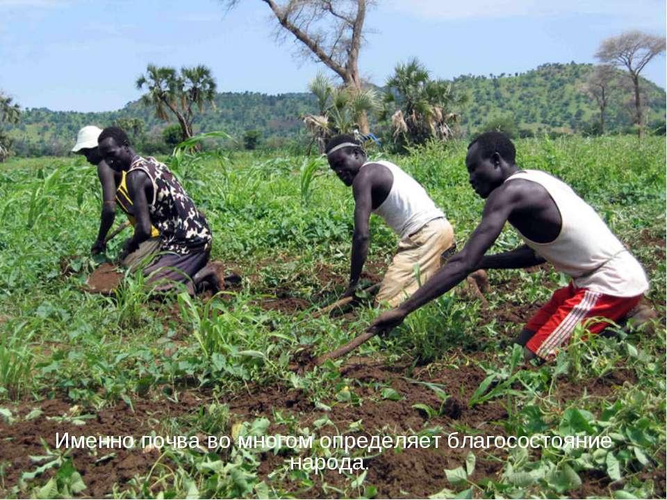 Именно почва во многом определяет благосостояние народа.