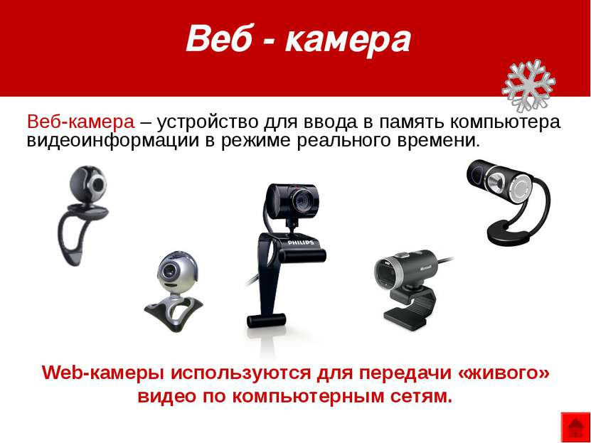 Web-камеры используются для передачи «живого» видео по компьютерным сетям. Ве...