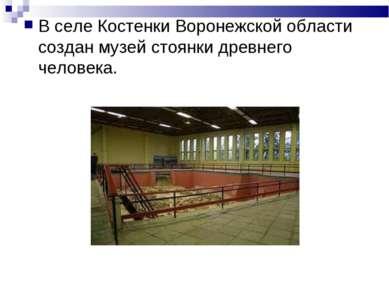 В селе Костенки Воронежской области создан музей стоянки древнего человека.