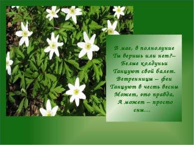 В мае, в полнолуние Ты веришь или нет?– Белые колдуньи Танцуют свой балет. Ве...
