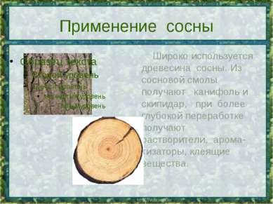 Применение сосны Широко используется древесина сосны. Из сосновой смолы получ...