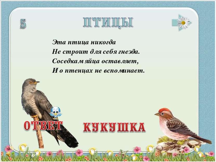 Эта птица никогда Не строит для себя гнезда. Соседкам яйца оставляет, И о пте...