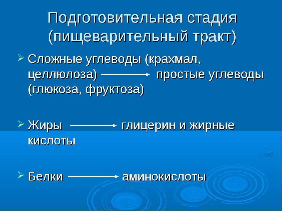 Подготовительная стадия (пищеварительный тракт) Сложные углеводы (крахмал, це...