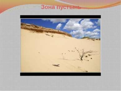 Как приспособились животные к условиям жизни в пустыне? Первая проблема живот...