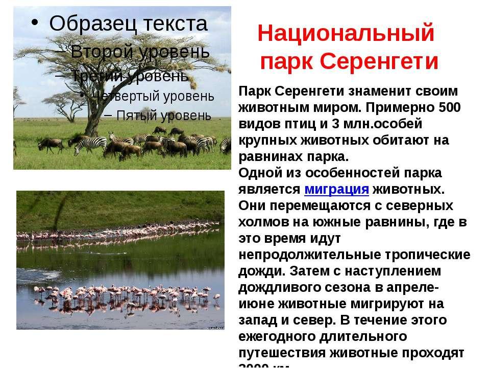 Национальный парк Серенгети Парк Серенгети знаменит своим животным миром. При...