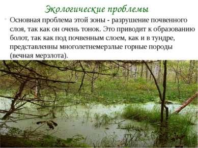 Основная проблема этой зоны - разрушение почвенного слоя, так как он очень то...