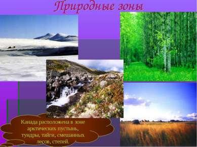 Канада расположена в зоне арктических пустынь, тундры, тайги, смешанных лесов...