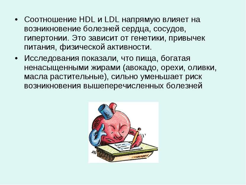 Соотношение HDL и LDL напрямую влияет на возникновение болезней сердца, сосуд...