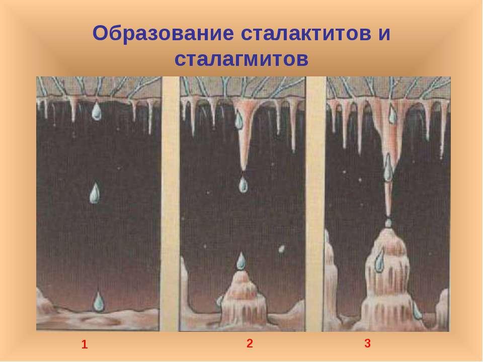 Образование сталактитов и сталагмитов 1 2 3