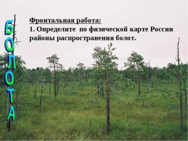Фронтальная работа: Определите по физической карте России районы распростране...