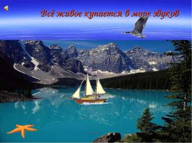 Всё живое купается в море звуков
