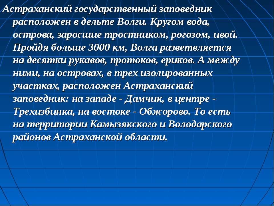 Астраханский государственный заповедник расположен в дельте Волги. Кругом вод...