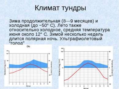 Климат тундры Зима продолжительная (8—9 месяцев) и холодная (до −50° С). Лето...