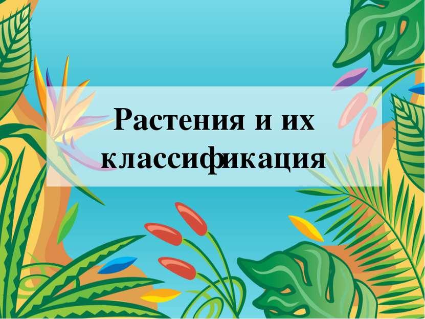 Растения и их классификация