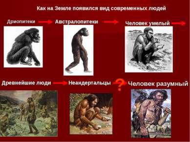 Дриопитеки Австралопитеки Человек умелый Древнейшие люди Неандертальцы Челове...