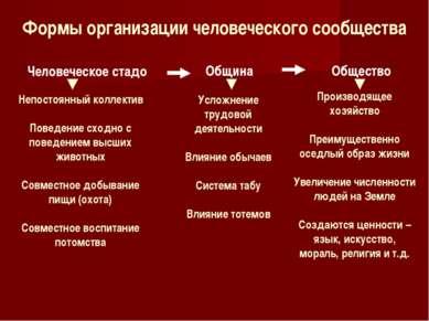 Формы организации человеческого сообщества Человеческое стадо Непостоянный ко...