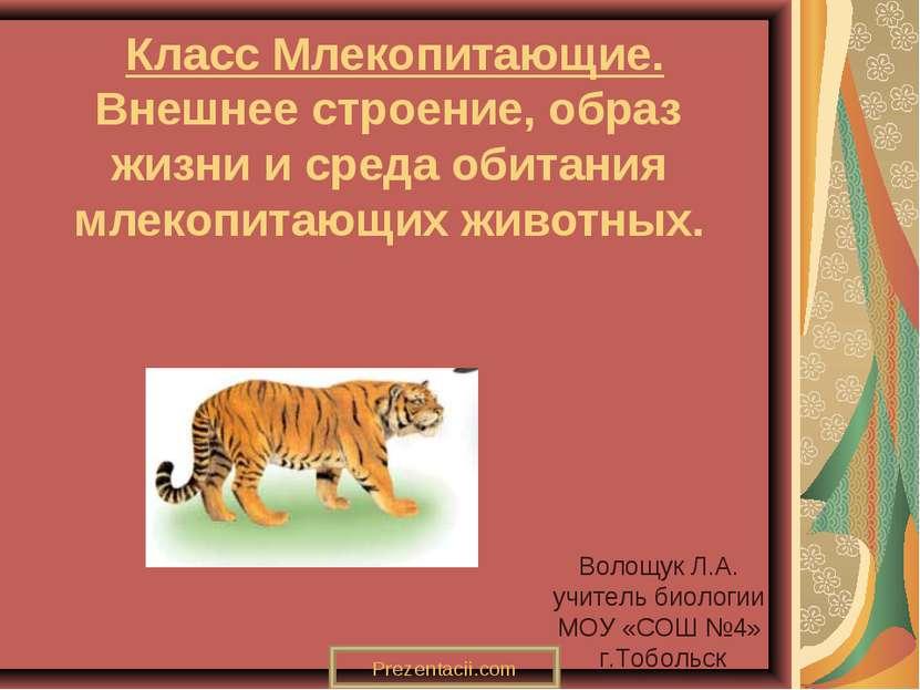 Класс Млекопитающие. Внешнее строение, образ жизни и среда обитания млекопита...