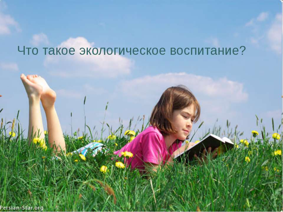Что такое экологическое воспитание?
