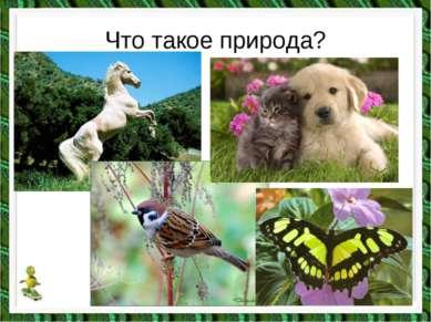 Что такое природа?