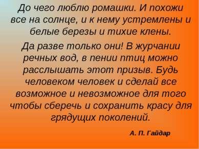 А. П. Гайдар До чего люблю ромашки. И похожи все на солнце, и к нему устремле...
