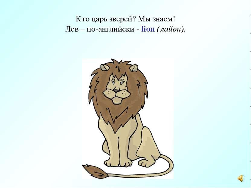 Кто царь зверей? Мы знаем! Лев – по-английски - lion (лайон).