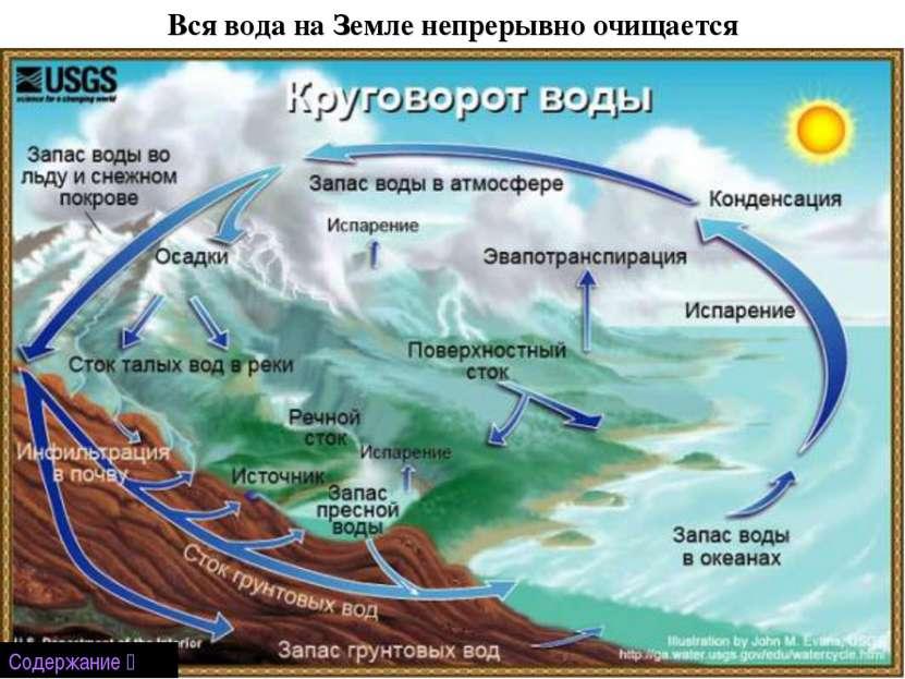 Вся вода на Земле непрерывно очищается Содержание