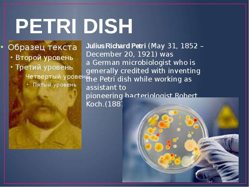 PETRI DISH Julius Richard Petri (May 31, 1852 – December 20, 1921) was a Germ...
