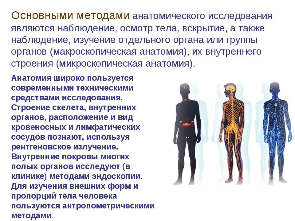 Основными методами анатомического исследования являются наблюдение, осмотр те...