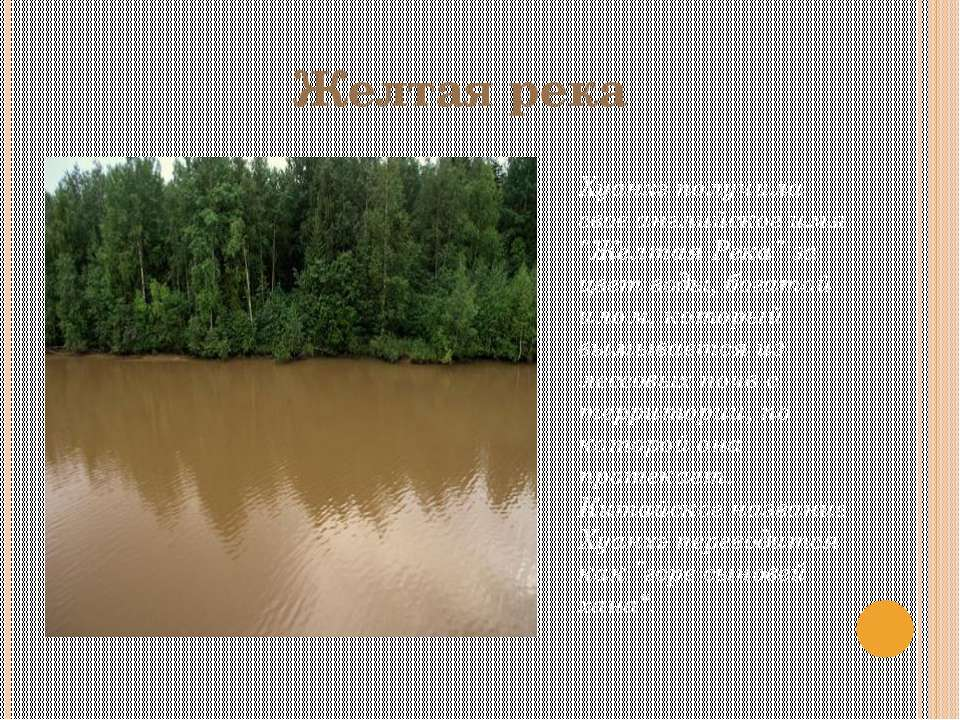 """Желтая река Хуанхэ получила свое английское имя """"Желтая Река"""" за цвет воды, б..."""