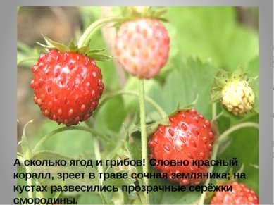 А сколько ягод и грибов! Словно красный коралл, зреет в траве сочная земляник...