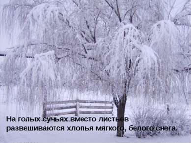 На голых сучьях вместо листьев развешиваются хлопья мягкого, белого снега.