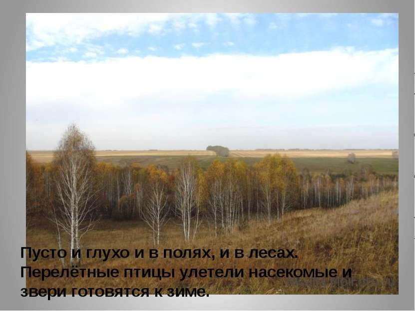 Пусто и глухо и в полях, и в лесах. Перелётные птицы улетели насекомые и звер...