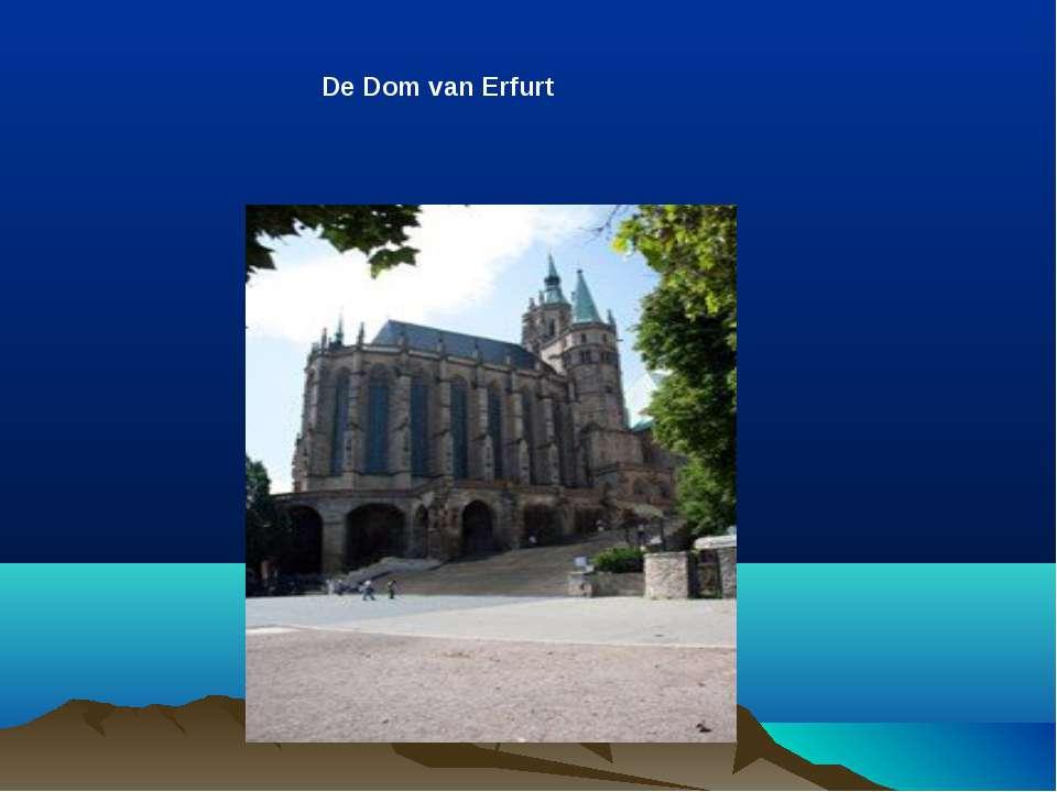 De Dom van Erfurt
