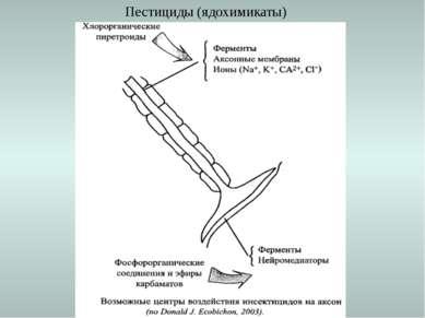 Пестициды (ядохимикаты)
