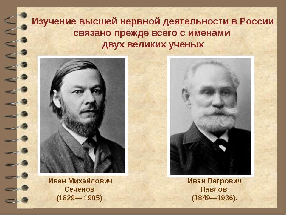 Изучение высшей нервной деятельности в России связано прежде всего с именами ...