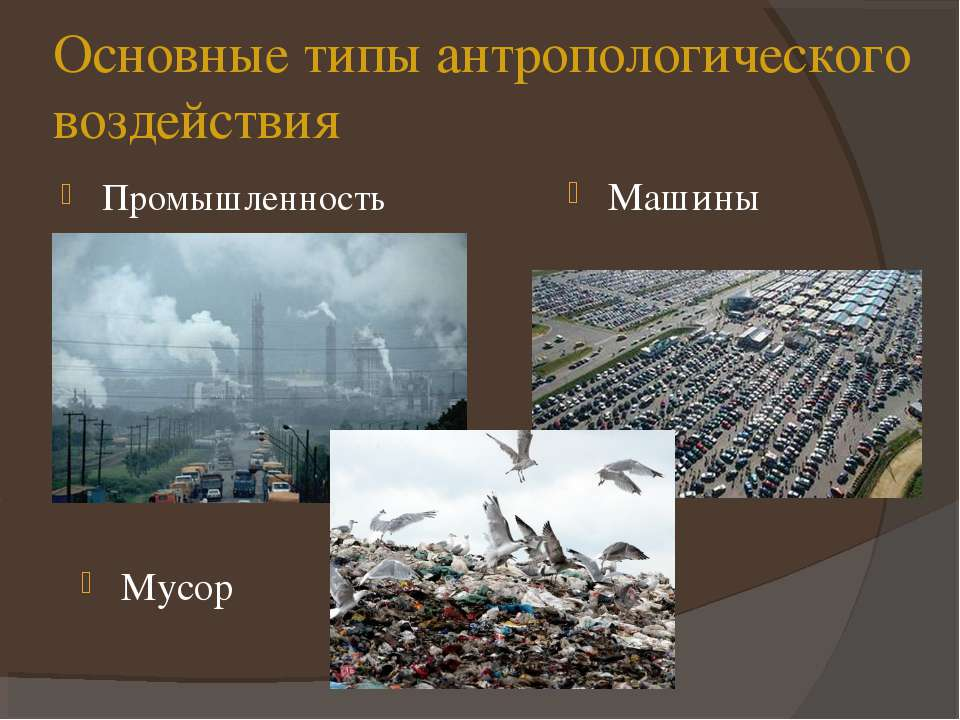 Основные типы антропологического воздействия Промышленность Машины Мусор