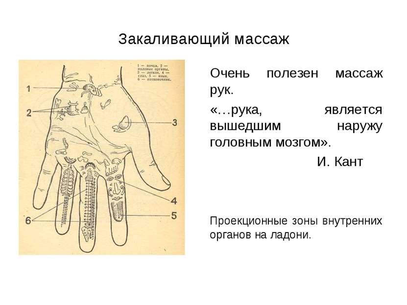 Закаливающий массаж Очень полезен массаж рук. «…рука, является вышедшим наруж...