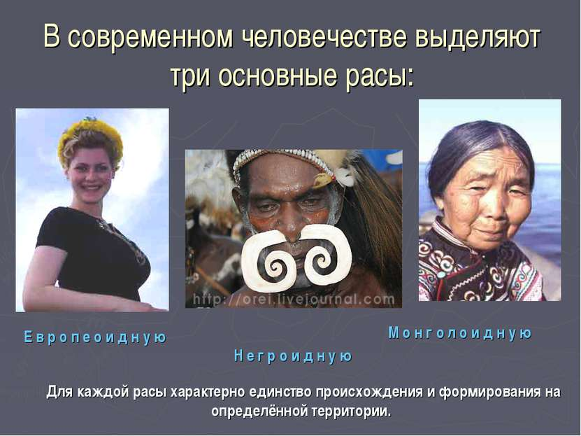 В современном человечестве выделяют три основные расы: Н е г р о и д н у ю Е ...