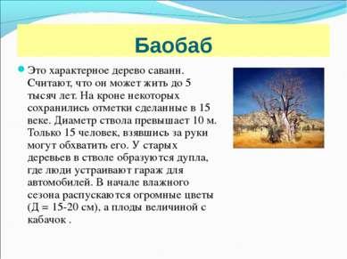 Баобаб Это характерное дерево саванн. Считают, что он может жить до 5 тысяч л...